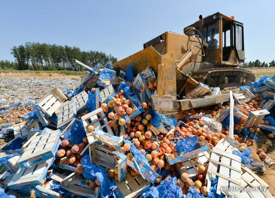 Картинки по запросу фото уничтожение еды