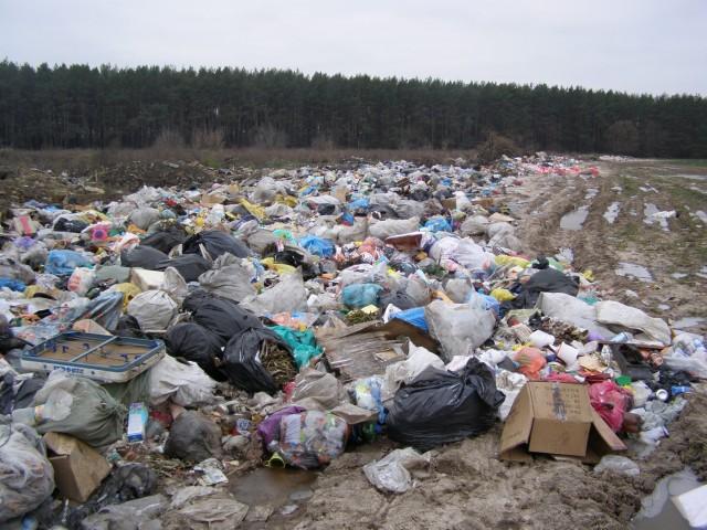 кредиты мусорный ветер выборгский район цветы турецкий